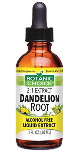 Root Liquid Herbal Extract - Botanic Choice Dandelion Root Alcohol Free Liquid Extract, 1 Fluid Ounce