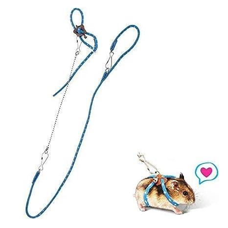 Hypeety Correa de nailon para hámster y rata, para mascotas, jaula de jardín, caseta de juegos y correas, collar de Buscador: Amazon.es: Productos para ...