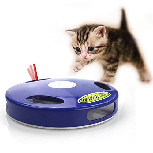 electronic toys for dogs - 4