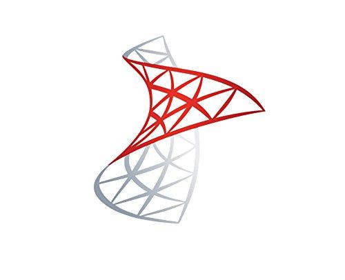Microsoft SQL Server 2016 10 User CALs - Open Business