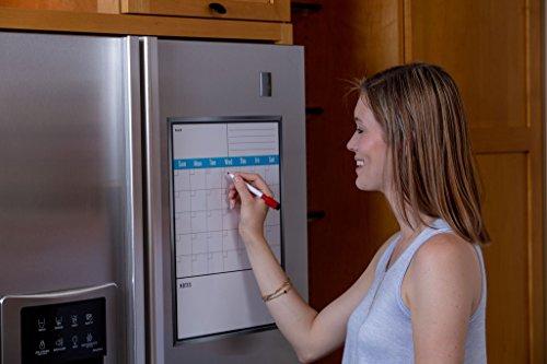 Buy buy french door fridge