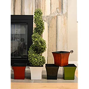 Admired by Nature Aritificial Boxwood 8