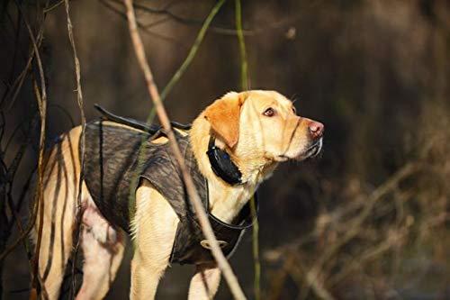 Avery Hunting Gear Boater's Dog Parka-Bottomland-XS