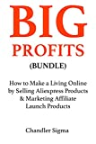BIG PROFITS BUNDLE: How to Make a Living Online by Selling Aliexpress Products & Marketing Affiliate Launch Products (2 Book Bundle)