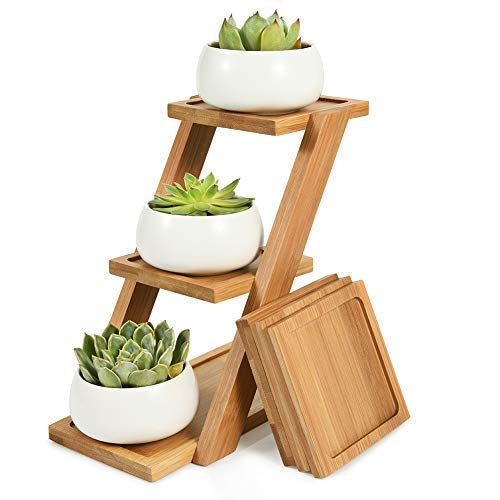 Succulent Plant Pot with Bamboo Tray, Round White Ceramic Cactus Pot with Drainage for Room Decor, Set of 3