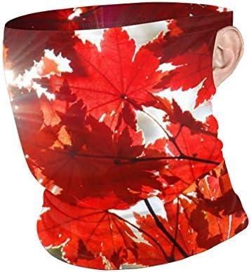 フェイスカバー Uvカット ネックガード 冷感 夏用 日焼け防止 飛沫防止 耳かけタイプ レディース メンズ Autumn Red Leaves Of Maple