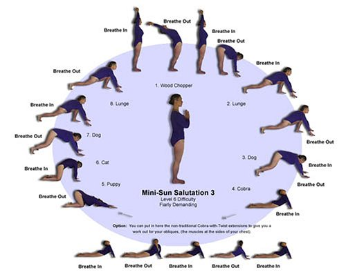 Amazon.com: Sun Salutation Reference Card - Laminated ...