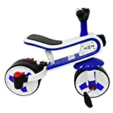 veZve Toddler Kids Tricycle Convertible Balance Bike 24 Months to 6 Years Preschool Safe Ride-on 2 in 1 Toy Walker