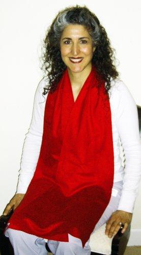 DinerWear Cravaat® II dining scarf adult bib (Red)