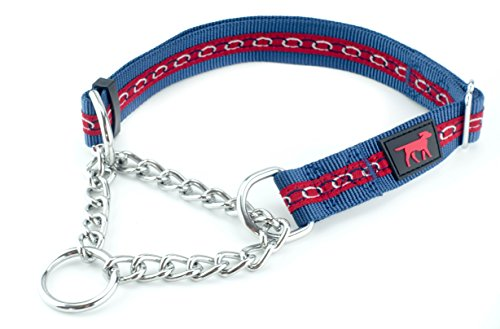 Martingale Collar For Dogs Is Perfect For Training | No Pull Dog Collar With Adjustable Gentle Nylon & Steel Chain | Convenient Sizing For All Breeds | (L)