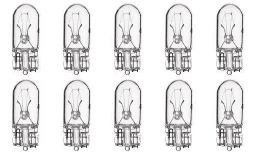 168 Bulb - 3