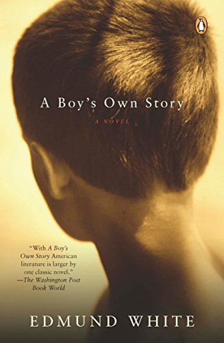 Pdf Lesbian A Boy's Own Story: A Novel