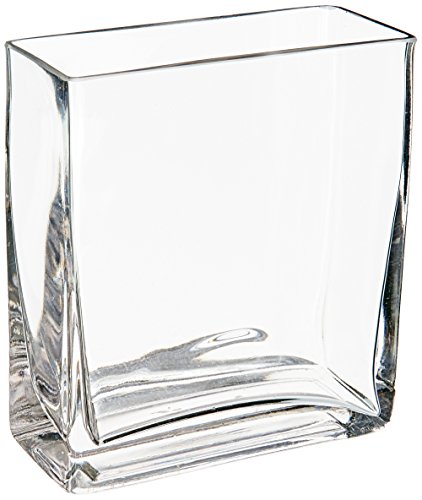 (WGV Clear Rectangle Block Glass Vase, 2 by 5 by 6-Inch)