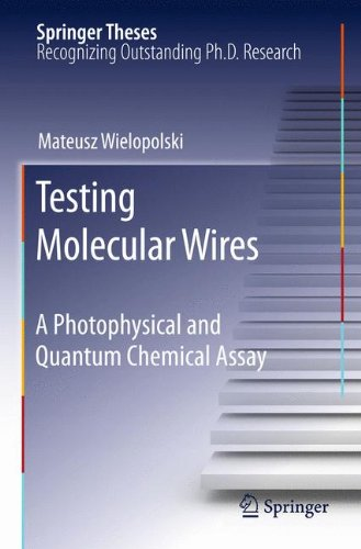 Testing Molecular Wires: A Photophysical and Quantum Chemical Assay (Springer Theses)