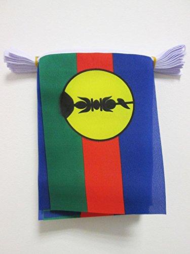 AZ FLAG New Caledonia 6 Meters Bunting Flag 20 Flags 9'' x 6'' - New Caledonian String Flags 15 x 21 cm - New Caledonia Flag