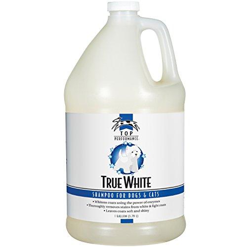 Top Performance TP606 91 True White Whitening Pet Shampoo Gallo