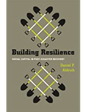 Building Resilience: Social Capital in Post-Disaster Recovery