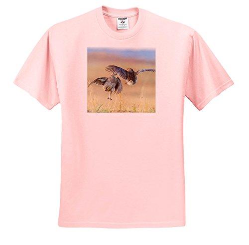 Price comparison product image 3dRose Danita Delimont - Birds - USA,  Nebraska,  Sand Hills. Male Sharp-Tailed grouse Fighting. - T-Shirts - Light Pink Infant Lap-Shoulder Tee (6M) (TS_259683_70)