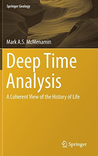 View Life - Deep Time Analysis: A Coherent View of the History of Life (Springer Geology)
