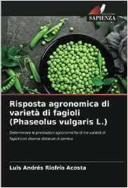 Risposta agronomica di varietà di fagioli (Phaseolus vulgaris L.): Determinare le prestazioni agronomiche di tre varietà di fagioli con diverse distanze di semina