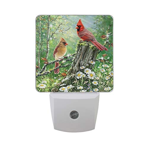 Spring Cardinal Birds Led Night Light plug in Set of 2 for Bedroom Bathroom Kitchen Hallway Stairs,Sunflowers Daisy Nightlights Auto Senor Dusk to Dawn for Kids Adults Room Indoor Home Decoration