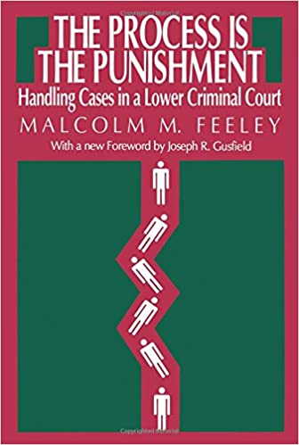 Book The Process is the Punishment: Handling Cases in a Lower Criminal Court