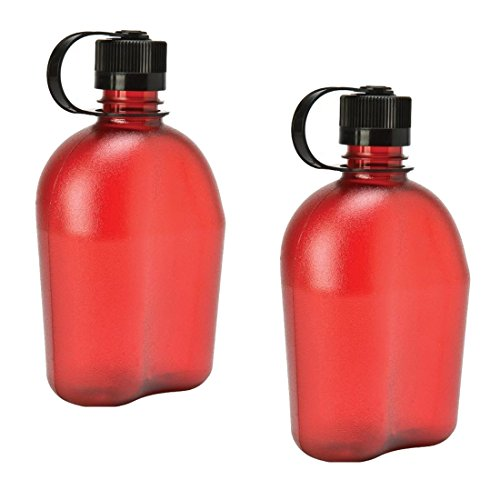 Nalgene Oasis 1qt Canteen Bottle 2 Pack