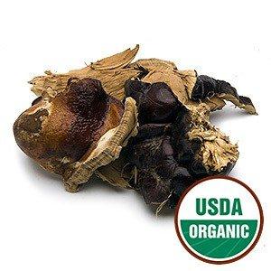 Organic Red Reishi Mushrooms, Large Pieces, 1 lb Bulk Herb