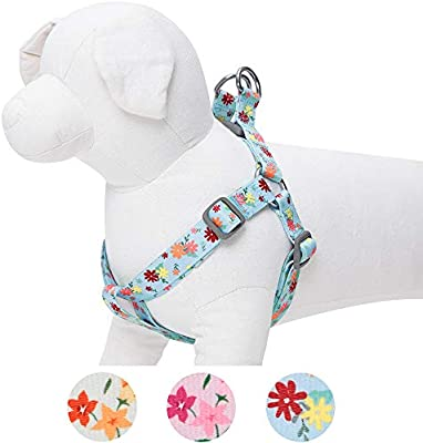 Umi. by Amazon - Made Well - Arnés para perros con estampado de ...