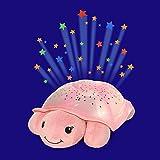 Cloud b Pink Twinkling Twilight Turtle, 1 EA