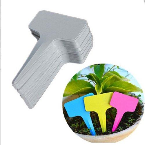 ThanaphatShop 100pcs 6x3CM Gardening Plastic Plant Flower T-type Tags Marker (5800 Labels)