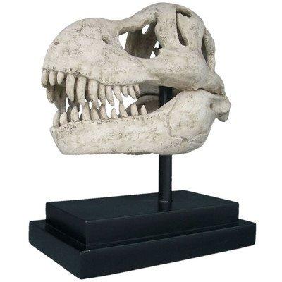 Design Toscano T-Rex Dinosaur Skull Fossil Statue on Museum (Animal Skulls For Sale)