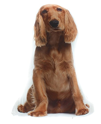 Dog Themed Decorative Accent Pillow, Red Setter Spaniel , Approx 14