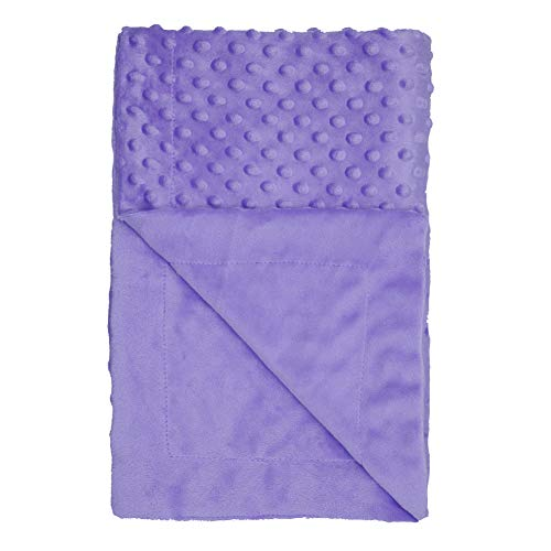 Annlaite Unisex Children's Soft Baby Blanket Minky Dot- Sherpa Fleece Baby Blanket (Purple)