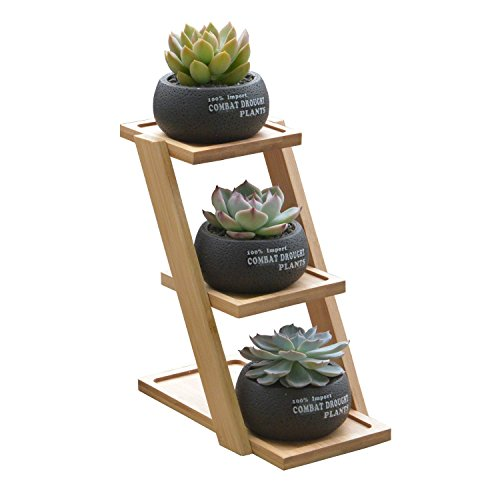Succulent Gardening Planter Pot,3 in1 Round Decorative Flower Pot/Container/Flower Holder Bowl with Potted Garden Patio Display Plant Rack Flower Stand by Yousun