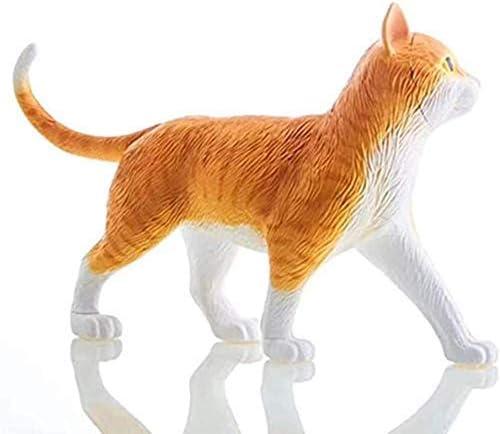 Modellen Skelet Kat van anatomisch lichaam Afneembare organen Puzzel Speelgoed Demonstratiesjablonen Aanbevolen voor dierenkliniek