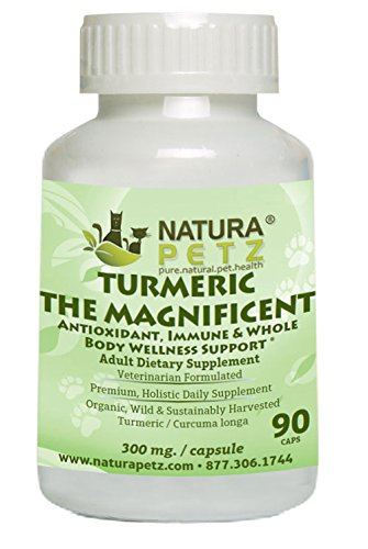 Turmeric the Magnificent - Antioxidant, Immune & Whole Body Wellness Support Adult Dogs & Cats by Natura Petz Organics