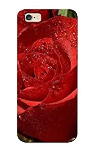 Slim Fit PC Protector Shock Absorbent Bumper Red Roses Case For Iphone 5/5S Cover