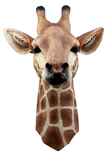 Ebros Safari Giraffe Head Trophy Taxidermy Wall Decor Wildlife Animal Sculpture Hanging Plaque Figurine