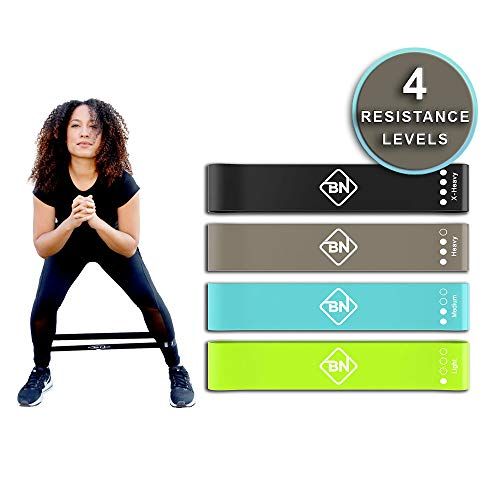 Premium Booty Resistance Loop Bands for Legs and Butt | Set of 4 with Carrying Bag | Best for at Home Workouts, Glute Builder, Exercise and Fitness
