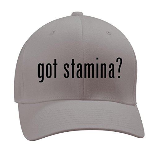 got stamina? - A Nice Men's Adult Baseball Hat Cap, Silver, Small/Medium