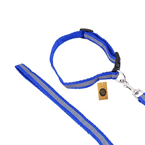 The Pets Company Reflective Nylon Leash with Collar Set for Puppy and Small Dogs, Blue