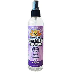 (Lavender) – New Waterless Dog Shampoo All Natural Dry Shampoo for Dogs or Cats No Rinse Required 100% Non-Toxic with… Click on image for further info.