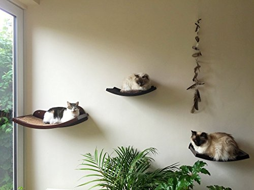Cat Shelf Modern Curved Wood Wall Mounted Perch Lowest