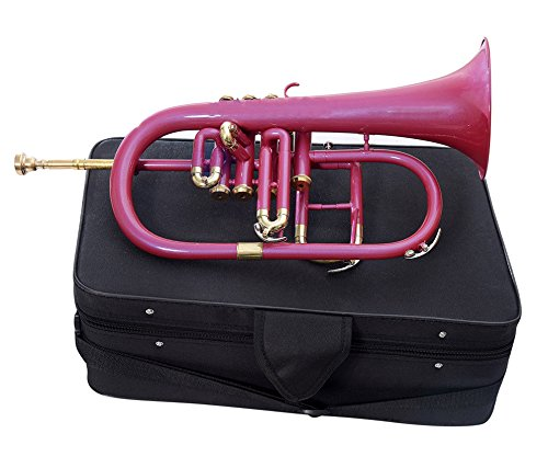 HANDMADE FLUGEL HORN 4 VALVE Bb PITCH WITH FREE HARD CASE AND MP, PINK COLOR