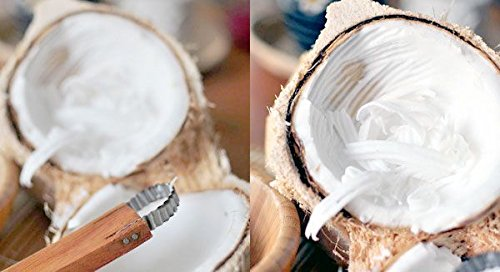 """1 X Thai Coconut Hand Grater Shredder 