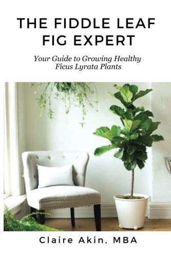 The Fiddle Leaf Fig Expert: Your Guide to Growing Healthy Ficus Lyrata Plants