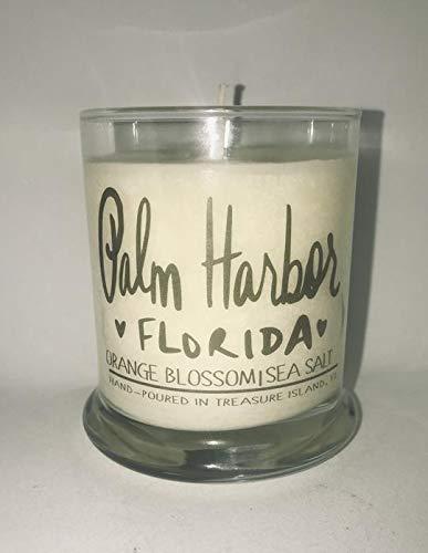Palm Harbor Florida Candle Florida Home Candle- Soy Candle- Sunshine State (State Florida Landscape Seminoles)