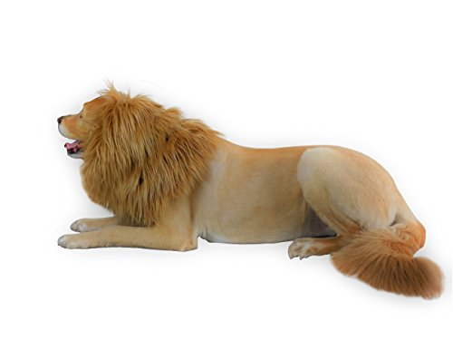 MOOZA Dog Halloween Costume - Dog and Human Lion Mane Plus Tail Dog Costume Premium Quality with Double-Layer Fabric, Comfortable Lion King Wig Costume for Pets and Human- Make Your Dog Lion King!]()