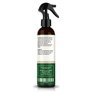 TreeActiv Acne Eliminating Body Spray | Natural Body, Back, Butt, Chest and Shoulder Acne Treatment | Salicylic Acid | Tea Tree | Aloe | Witch Hazel | Menthol | Mint | Men, Women, Teens | 8 fl oz